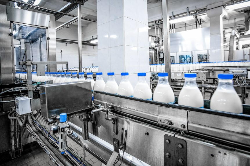 dairy producer