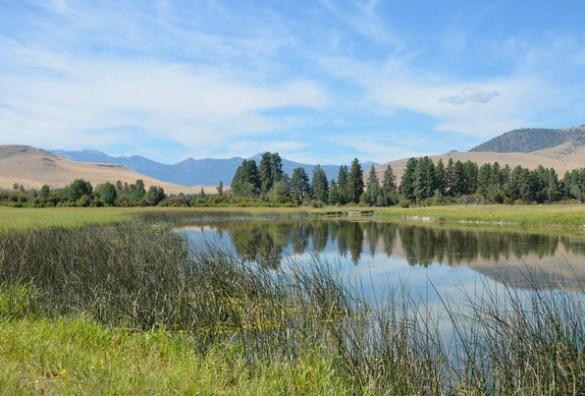 Agricultural Conservation Easement