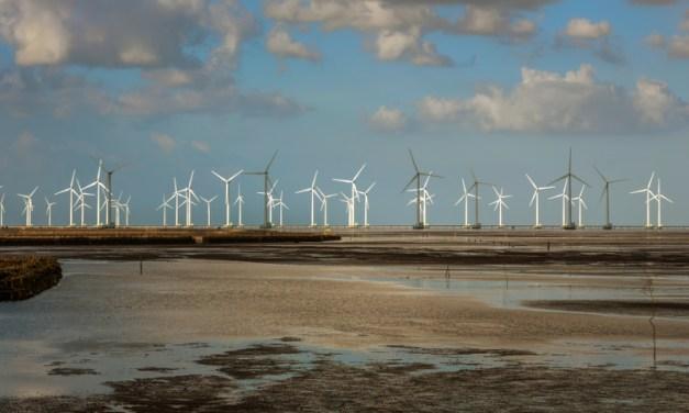 Vietnam's largest wind power plant commences commercial operations
