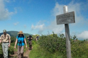 Carvers Gap to Grassy Ridge
