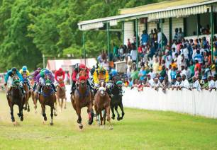 Horse races are held at the Barbados Turf Club on the old grounds of Garrison Savannah, where the British Caribbean Force was once billeted.