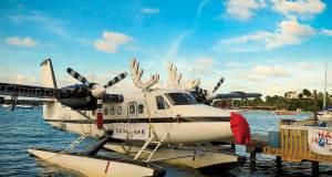 caribbean boat parade