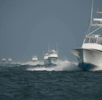 Governors Cup Megadock Billfish Tournamen