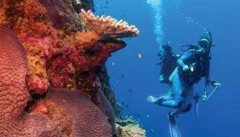 scuba, scuba dive, where to scuba, where to dive