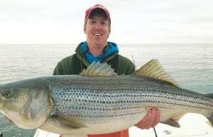 Rockfish Fishing in the Chesapeake, tournament, Striped Bass