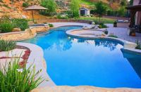 Planning Landscaping Around Your Inground Swimming Pool ...