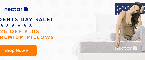 $125 Off + 2 FREE Pillows