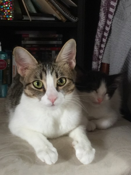 mama&ivan