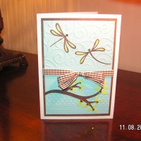 Pagoda Dragonflies