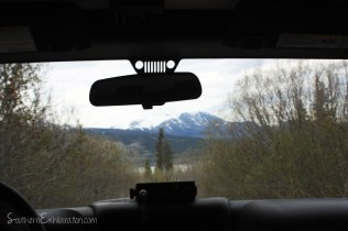 Backcountry Jeep Safari | Carcross, Yukon
