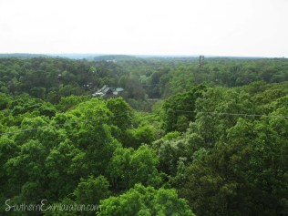 View of Historic Banning Mills from Screaming Eagle Tower | Whitesburg, GA