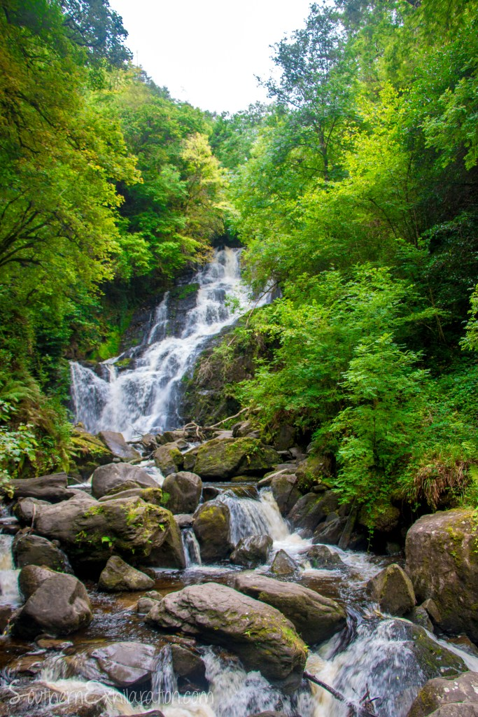 Killarney National Park | The Ring of Kerry | County Kerry, Ireland
