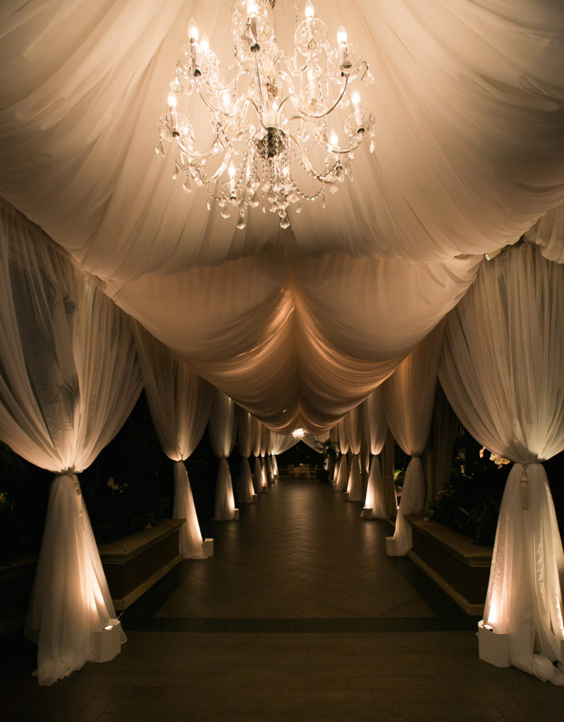 Wedding Drapery Entrance