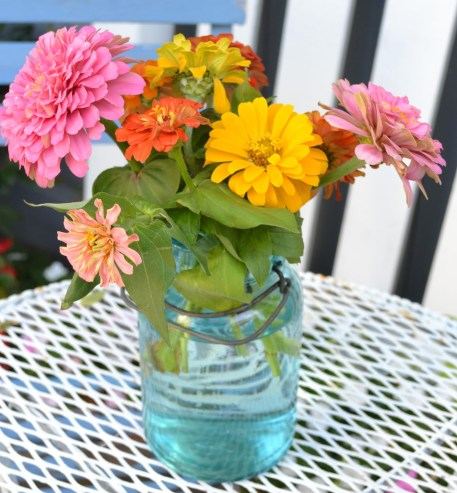 Zinnias in Mason Jar