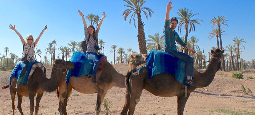 48 Hours of Marrakesh Magic
