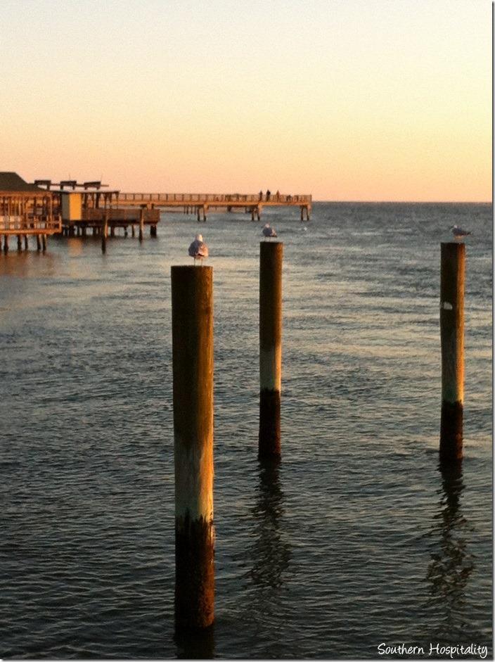 sunset tybee dock