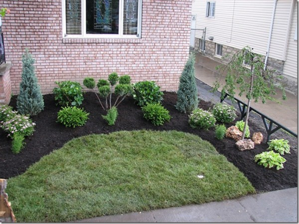 starting landscape plan