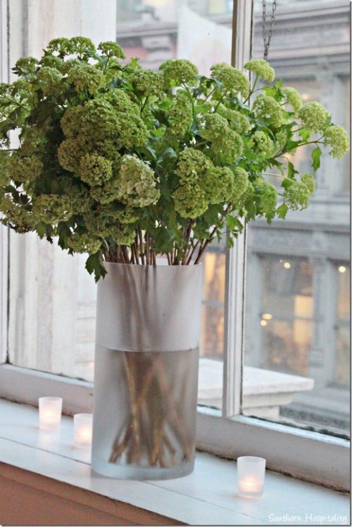 vase in window
