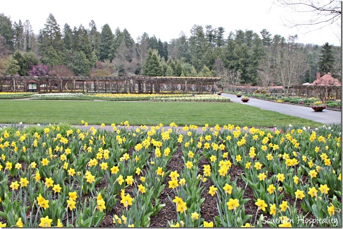 The Biltmore House and Gardens - Southern Hospitality