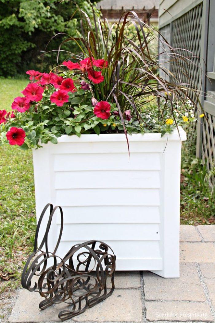 planters patio