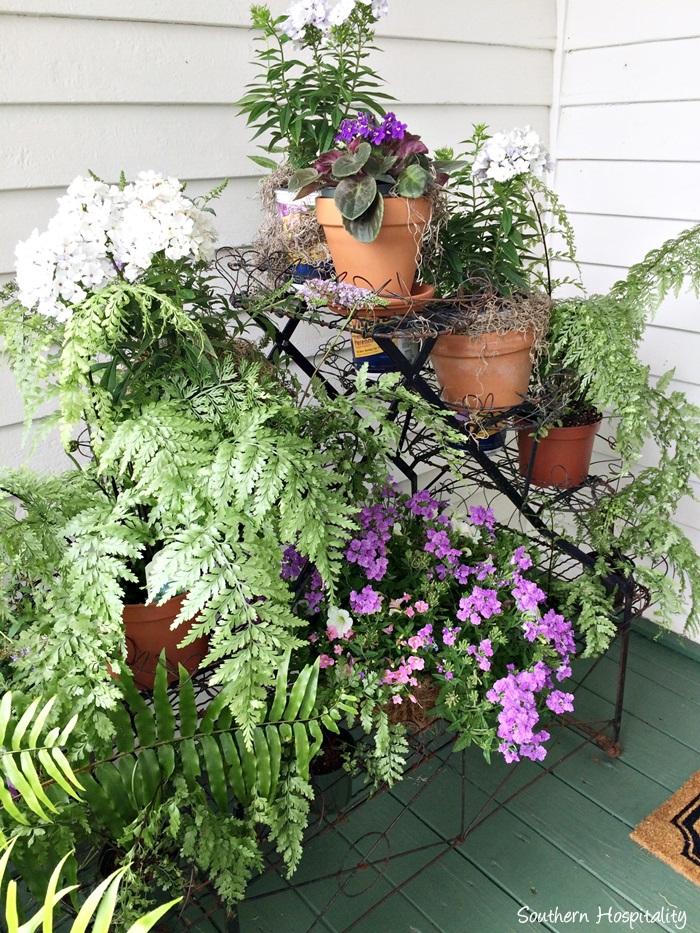 front porch viningsIMG_3904_20150803
