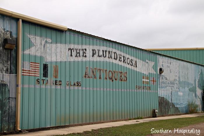 plunderosa001_20151005