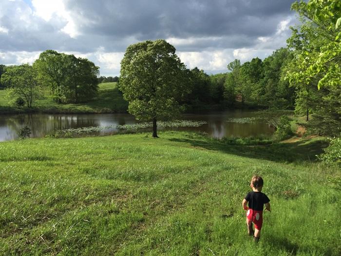 stillwater farm ALIMG_0014_20151005