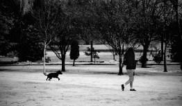 wanaka-snow-may'17-21