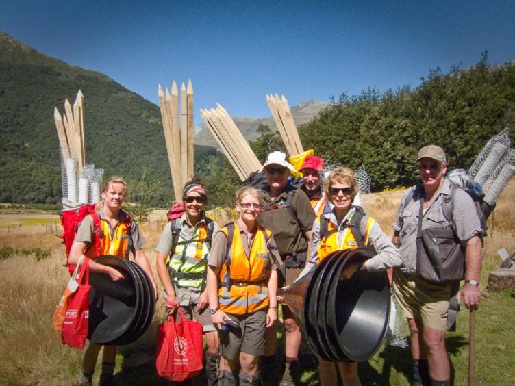 NZ beech forest seed funnels