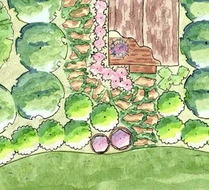 Garden Plans Southern Living Plants