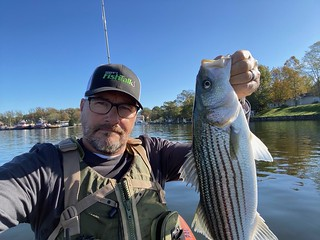 The latest chilly entrance that has descended on Maryland looks like a knock on the door for what's coming. There are nonetheless loads of fantastic fishing alternatives available — all the time be protected and ensure to put on a private flotation gadget (PFD) whereas out on the water.