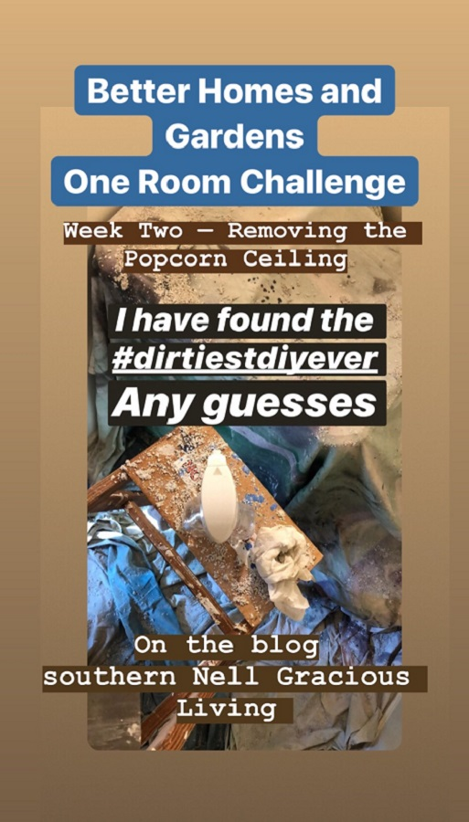 Popcorn Ceiling in a One Room Challenge