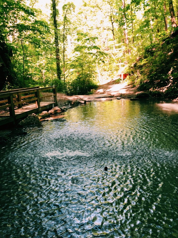 Southern hiking: Marble Mine Trail at Sloppy Floyd State Park