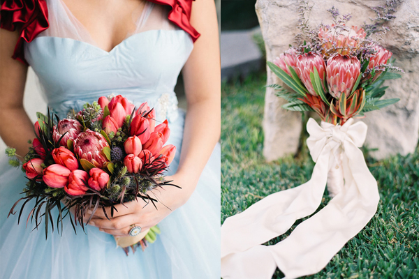 The Beautiful, The Bold, Protea Flower