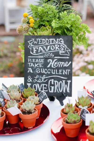 Pinterest Find of the Week: Succulent Wedding Favors — Southern ...