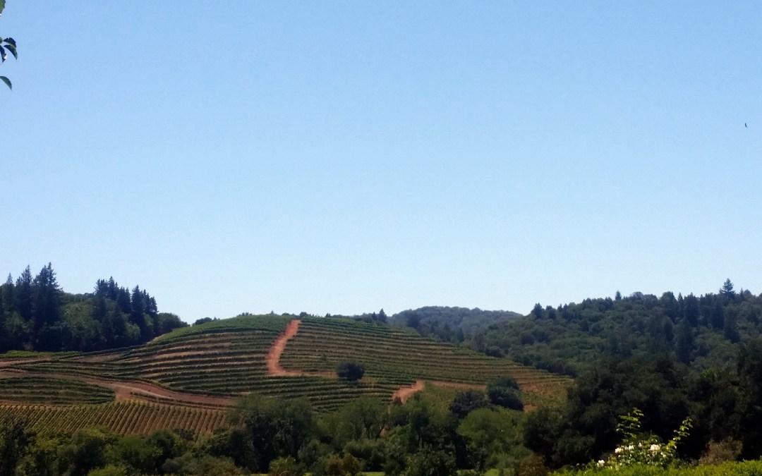Wine Brittle….Our Next Challenge