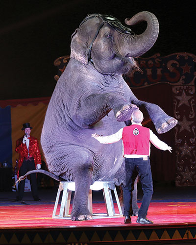 Spokesman says Loomis Bros. Circus Is proud to showcase elephants