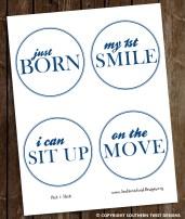 Preppy Monthly Stickers