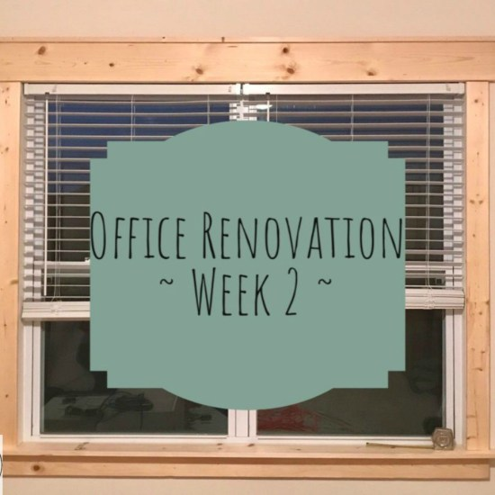 Office Renovation Week 2