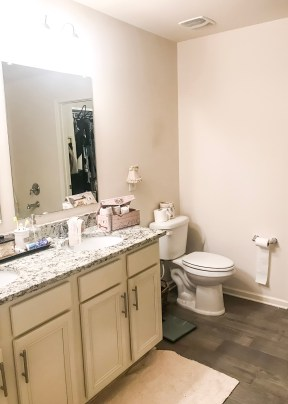 Before photo, bathroom molding, replacing bathroom molding, replacing molding, replacing baseboards, bathroom baseboards, mdf for baseboards, before photo bathroom renovation, before photo bathroom makeover