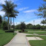 LibraryPark-Weston_TH5477