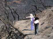 walking-track-wilsons-after-prom-bush-fire