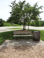 Peterswood, bench in shade