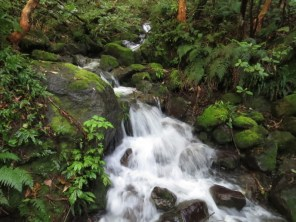 fyffe palmer waterfall