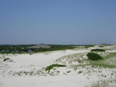 Island Beach State Park, Ocean County, NJ | South Jersey ...