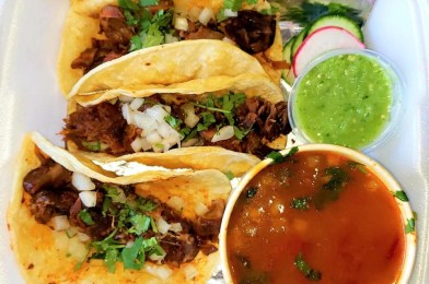 Where to Get Trendy Birria Tacos in South Jersey