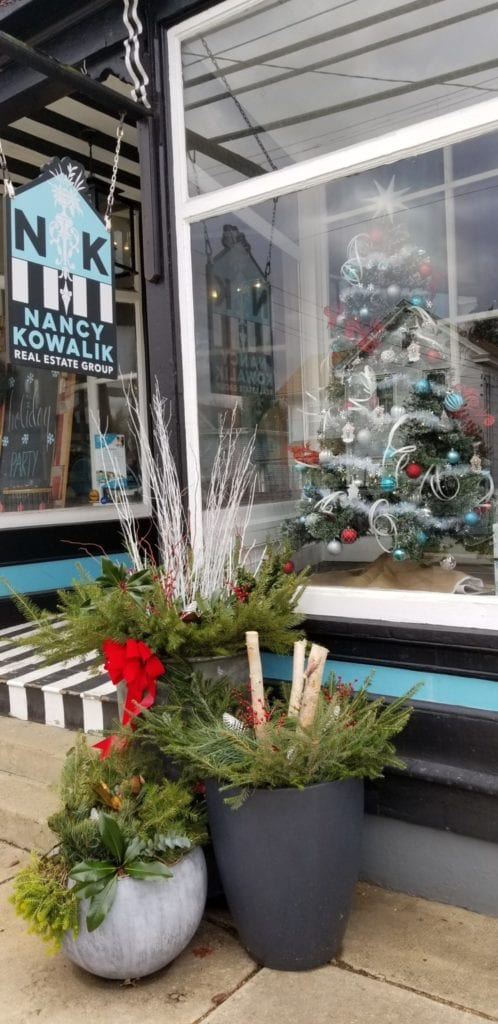 Front window showing Christmas tree and outdoor potted plants