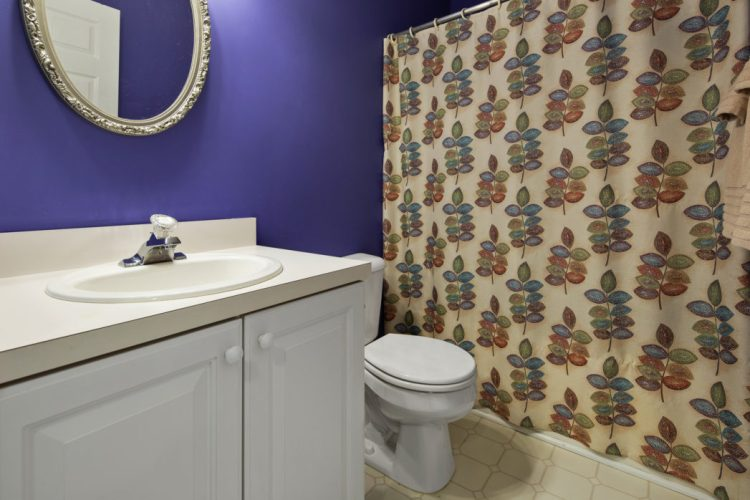 Hall bathroom with bright colors at 949 TWelve Oaks Drive
