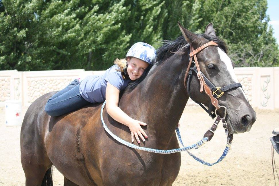 Hugging horses