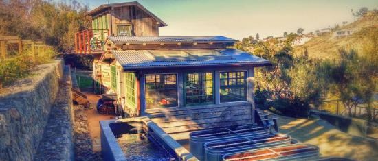 Image Courtesy of Laguna Beach Bluebird Canyon Farms